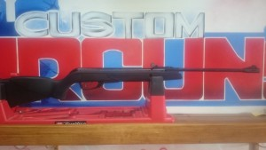 NYCA Gamo Black Shadow