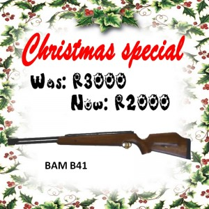 bam-b41