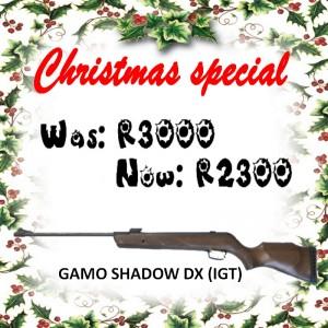 gamo-shadow-dx-igt