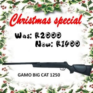 gamo-big-cat-1250